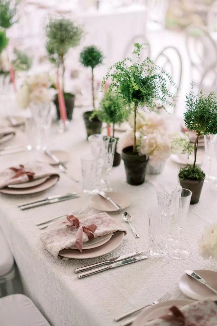 mini topiarias em vasinhos como centro de mesa de casamento